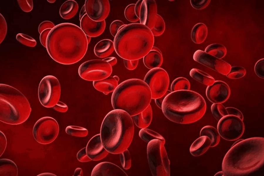 anemia semasa kehamilan